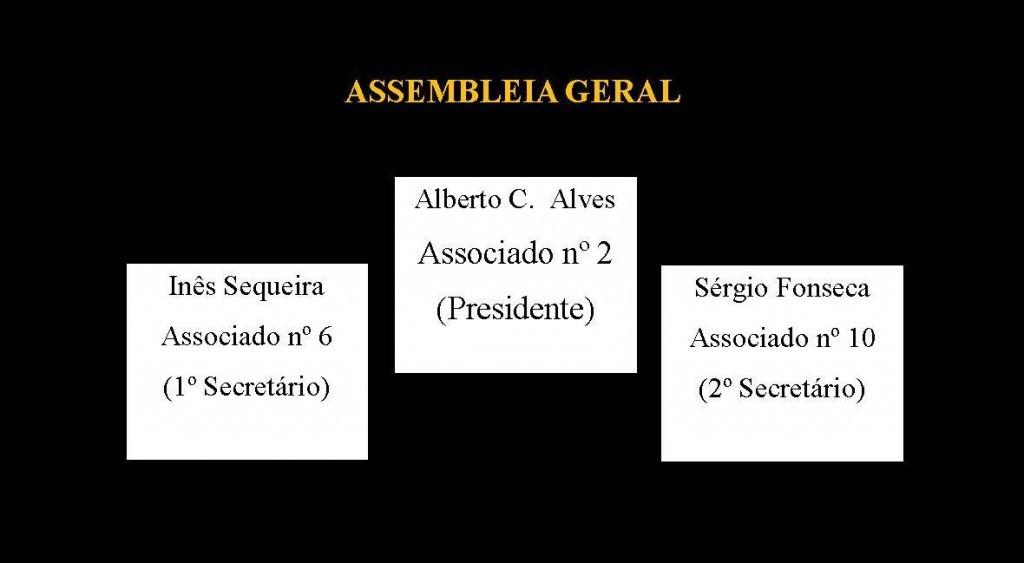 Assemblée Générale, Directeurs dla organów Unii Europejskiej, społecznych organów, Zgromadzenie ogólne