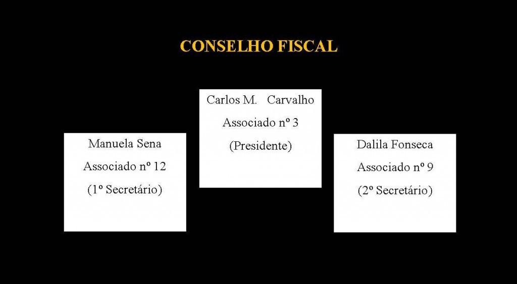 Conseil de Surveillance, Organes Directeurs, Orgãos Sociais, Conselho Fiscal
