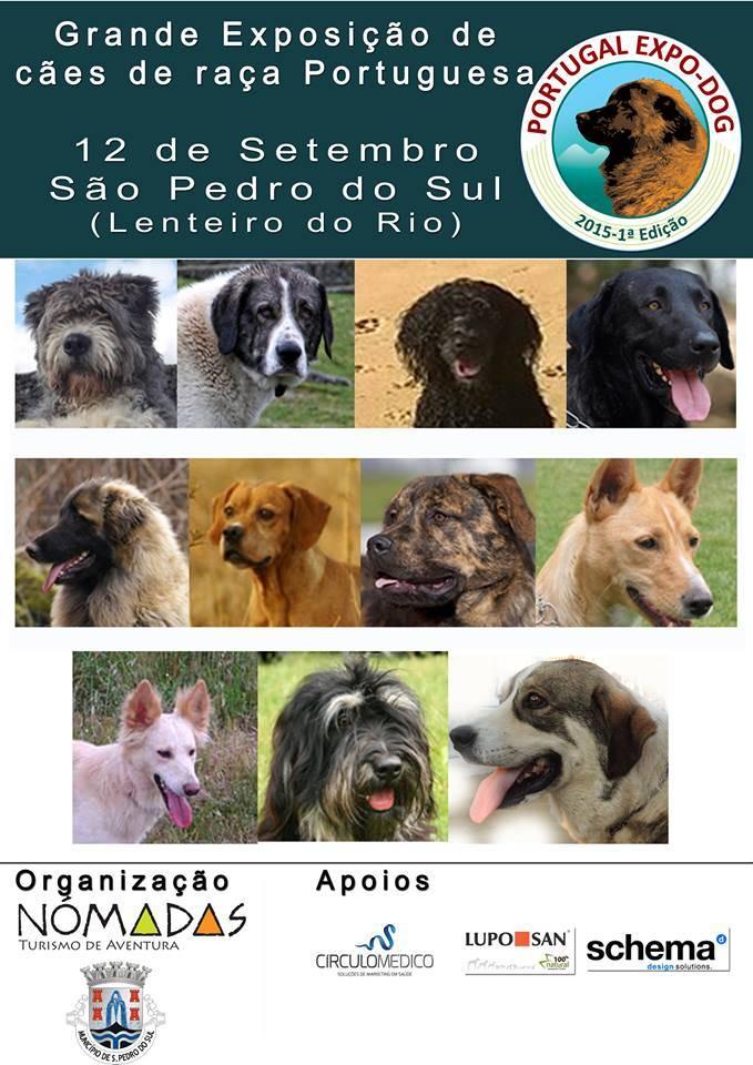 Scheda dell'attività settembre-Portogallo Expo-cane