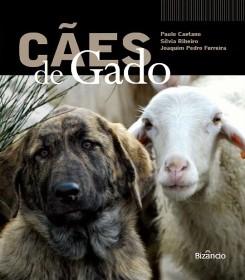 牲畜护卫犬