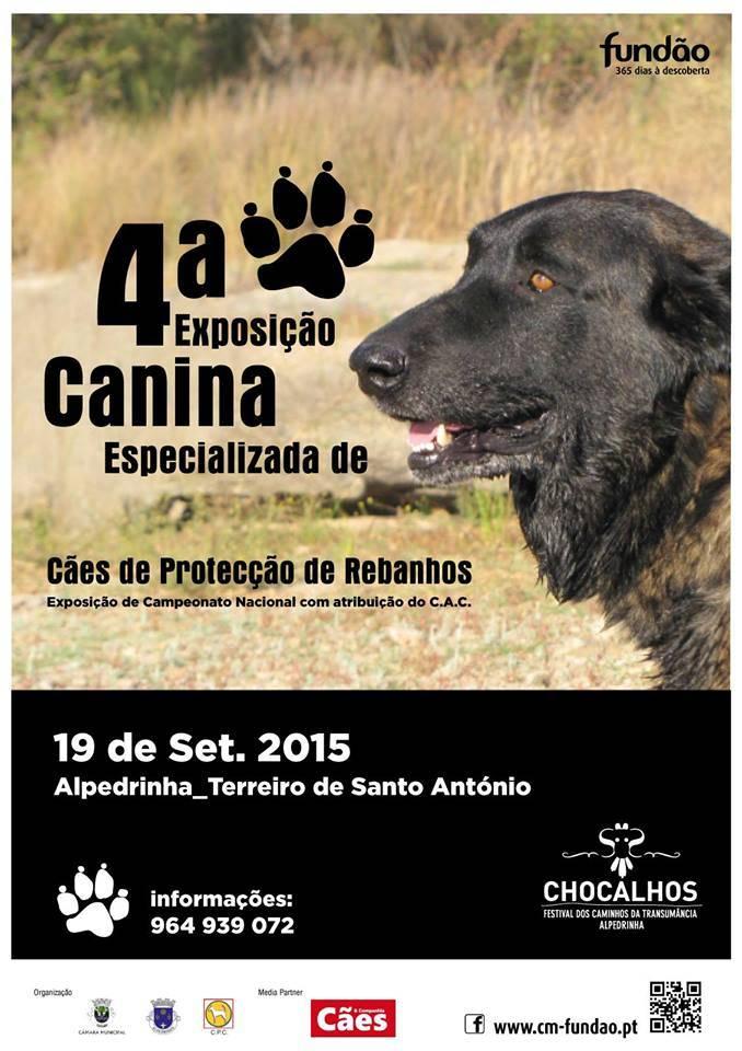 Agenda delle attività, sonagli, cani da protezione del bestiame