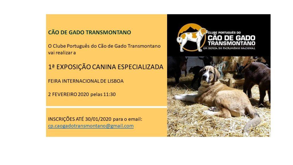 1ª Exposição Canina Especializada do CP do Cão de Gado Transmontano (CAC)