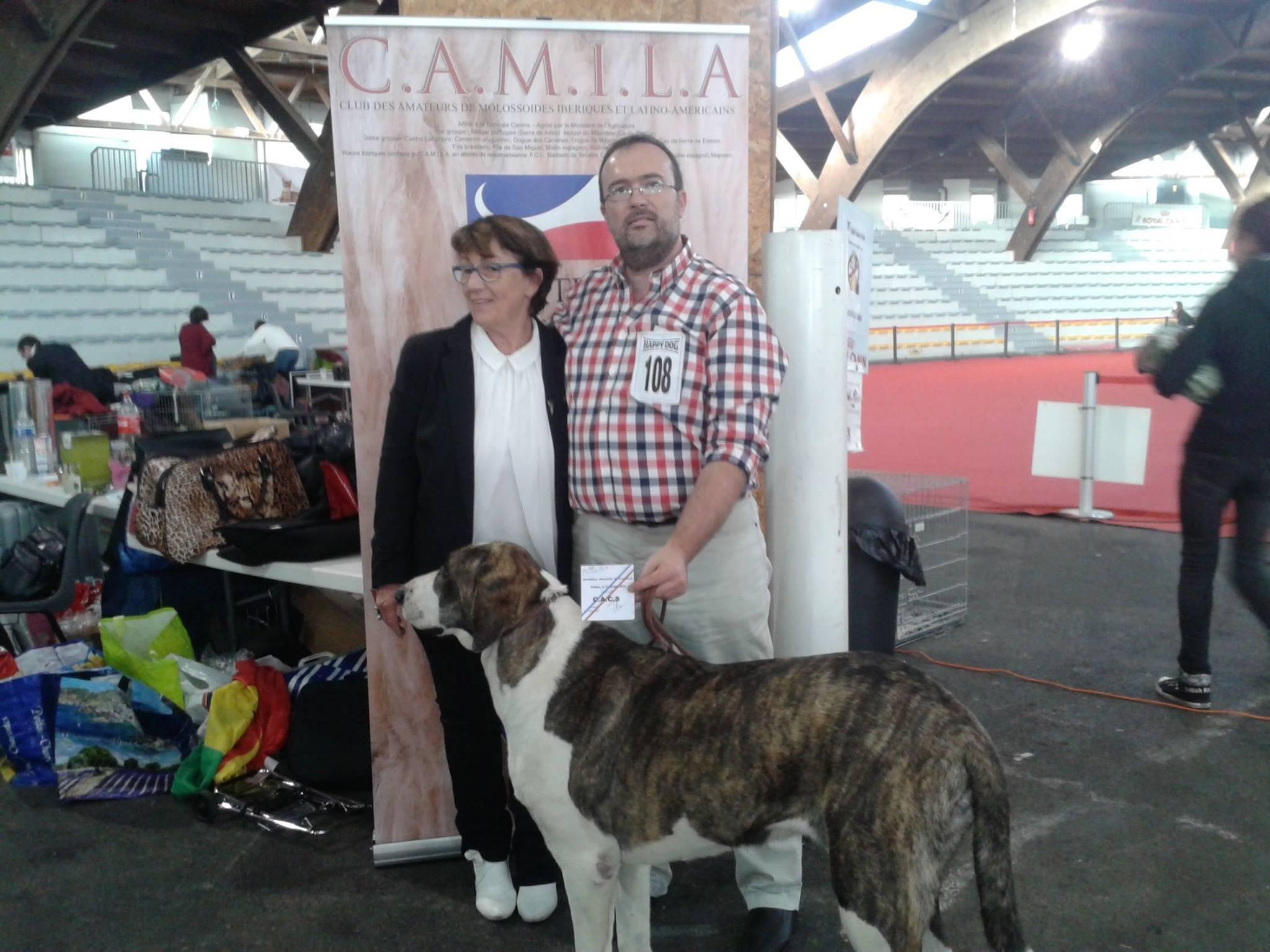 CAMILA Annual Championship Show 2015